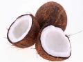 Poulet coco